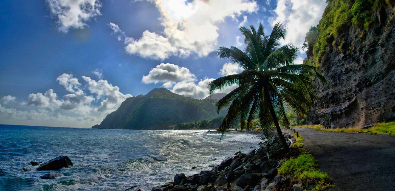 Плюсы и минусы гражданства Доминики